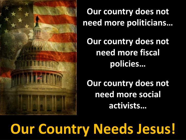 Our country does not need more politicians…