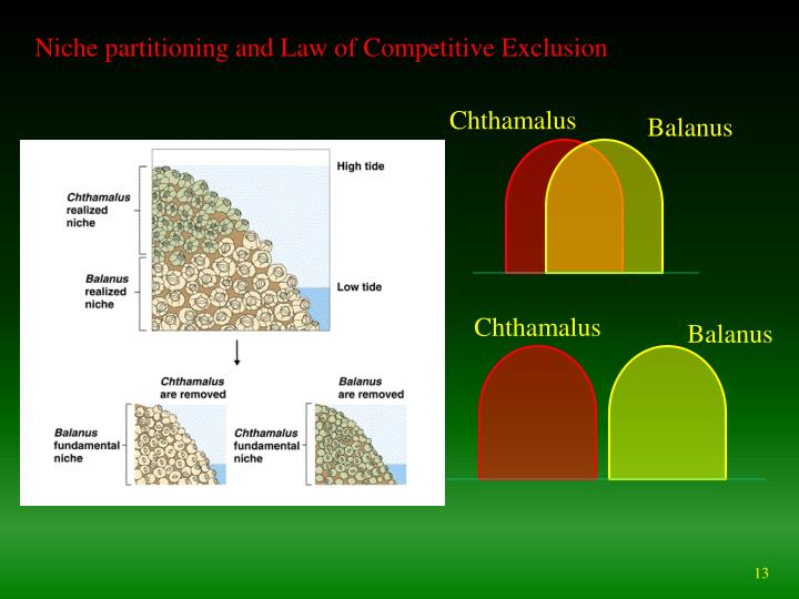 Niche partitioning and Law of Competitive Exclusion