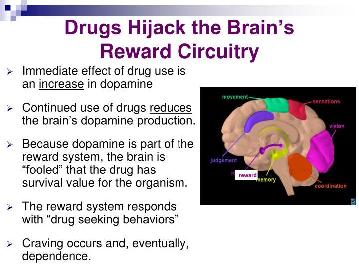 Drugs Hijack the Brain's