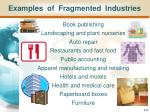 examples of fragmented industries