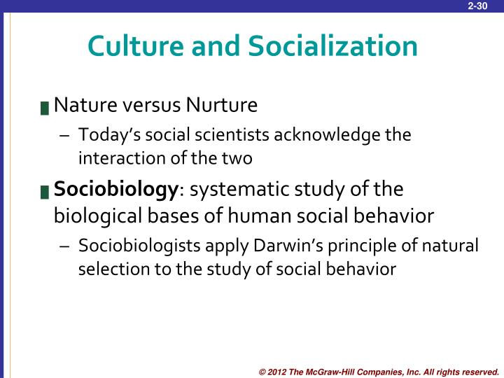 Culture and Socialization