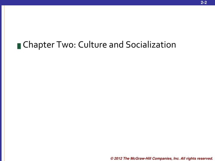 Chapter Two: Culture and Socialization