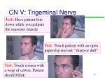 cn v trigeminal nerve2