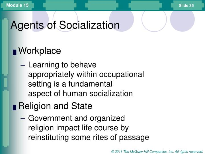 agents of socialization government
