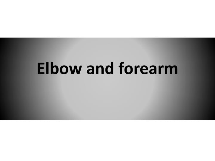 elbow and forearm n.