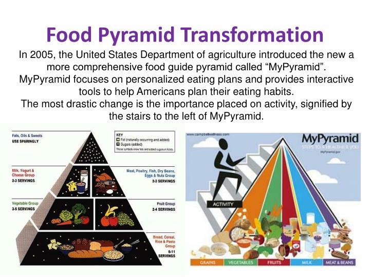 Food pyramid transformation