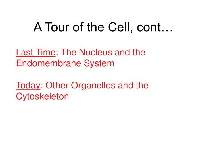 a tour of the cell cont n.