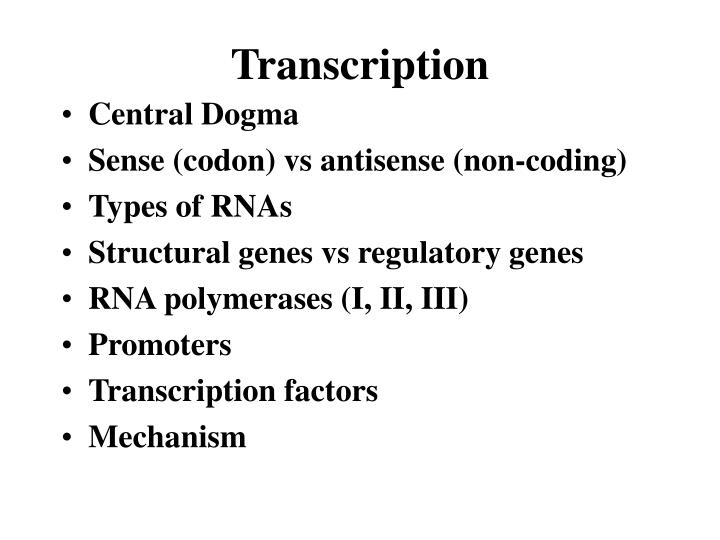 transcription n.