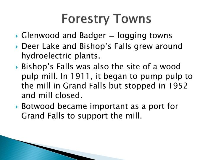 Forestry Towns