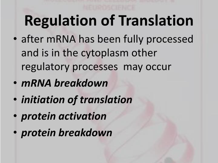 Regulation of Translation