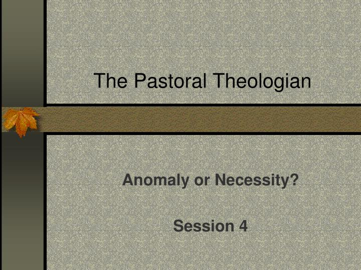 the pastoral theologian n.