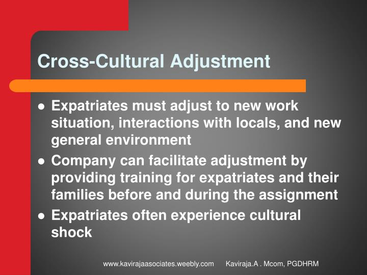 cross cultural interactions This lesson describes the three cultural agility competencies affecting an individual's cross-cultural interactions it also describes how these.