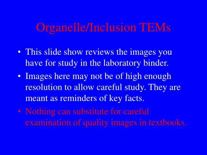 organelle inclusion tems n.