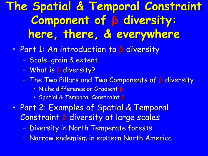 the spatial temporal constraint component of diversity here there everywhere n.