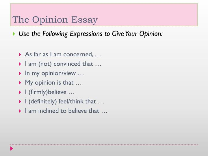 opinion essay computers