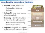 a soil profile consists of horizons