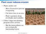 plant cover reduces erosion