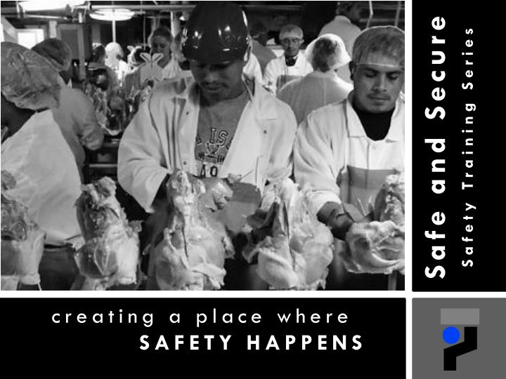 safe and secure safety training series n.