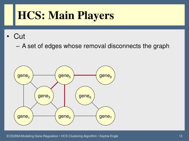 HCS: Main Players
