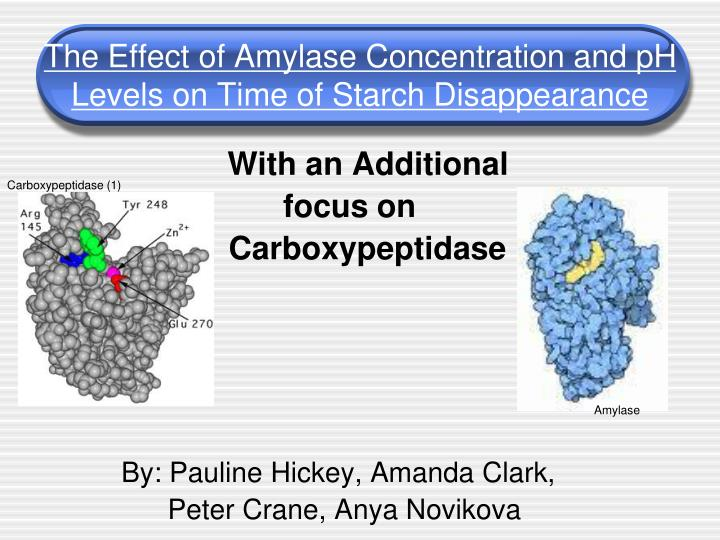 the effect of amylase concentration and ph levels on time of starch disappearance n.