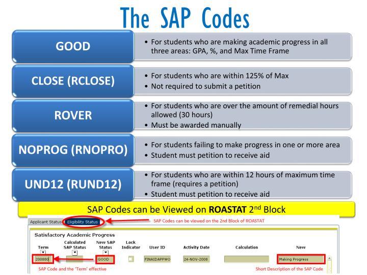 The SAP Codes