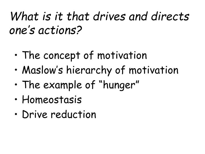 what is it that drives and directs one s actions n.