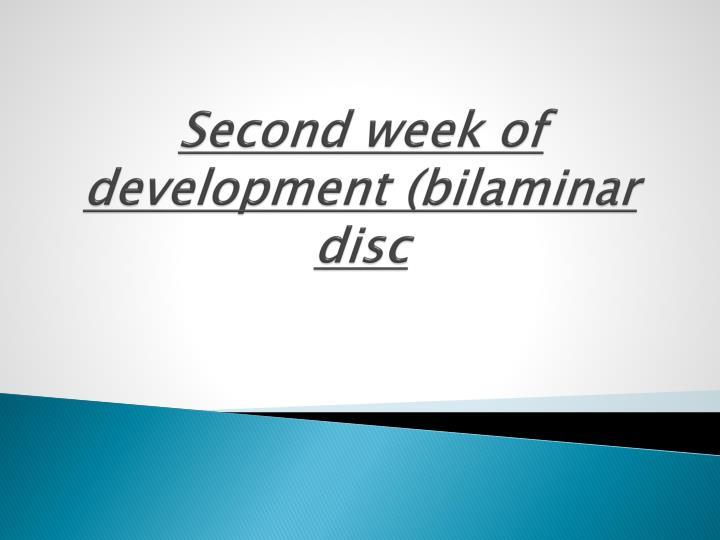 Second week of development bilaminar disc