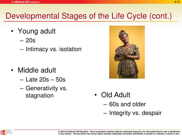 Developmental Stages of the Life Cycle (cont.)