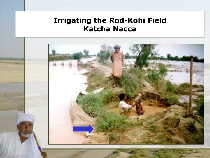 Irrigating the Rod-Kohi Field