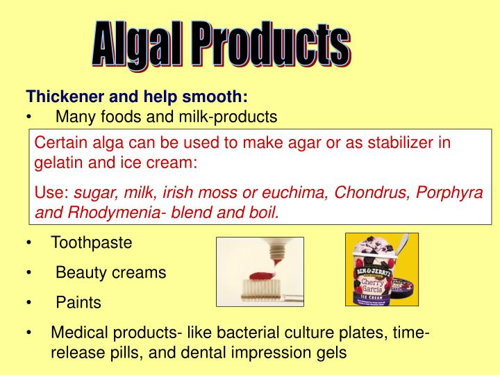 Algal Products
