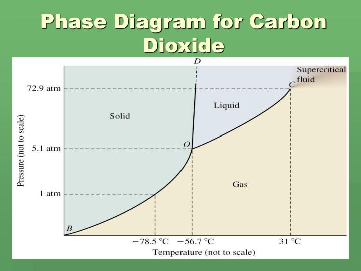 Ppt Phase Diagram Powerpoint Presentation Id1824152