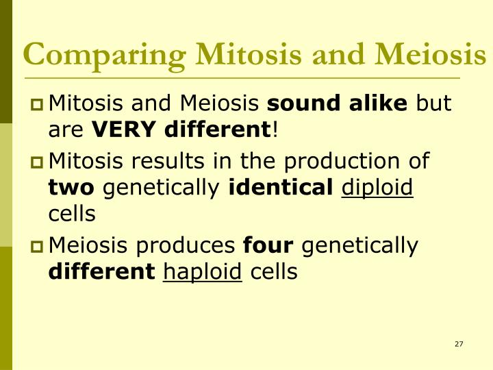 Comparing Mitosis and Meiosis