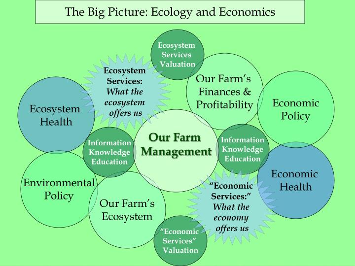 The Big Picture: Ecology and Economics