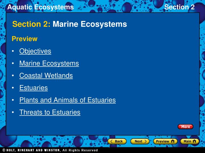 section 2 marine ecosystems n.