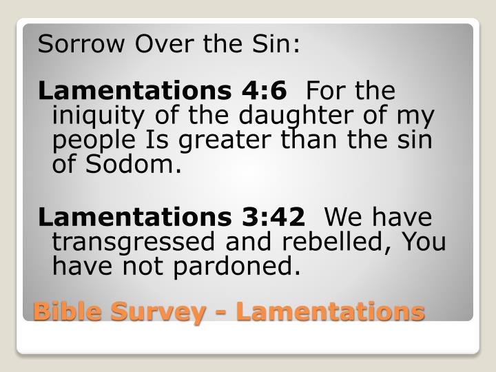 Sorrow Over the Sin: