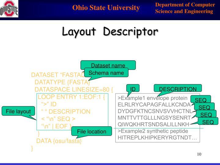 Layout  Descriptor