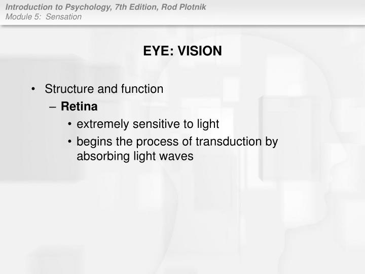 EYE: VISION