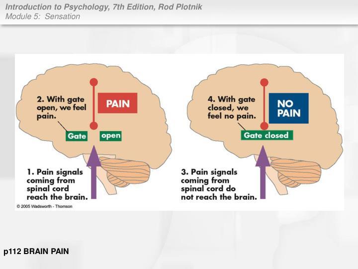 p112 BRAIN PAIN