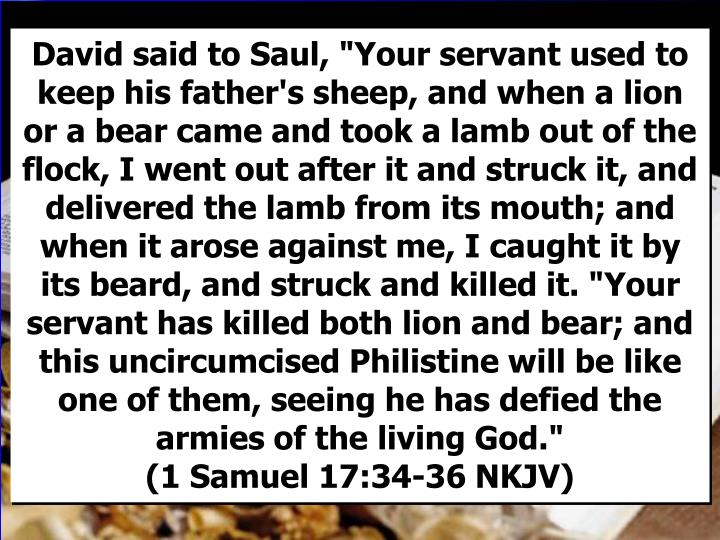 """David said to Saul, """"Your servant used to keep his father's sheep, and when a lion or a bear came and took a lamb out of the flock, I went out after it and struck it, and delivered the lamb from its mouth; and when it arose against me, I caught it by its beard, and struck and killed it. """"Your servant has killed both lion and bear; and this uncircumcised Philistine will be like one of them, seeing he has defied the armies of the living God.""""                          (1 Samuel 17:34-36 NKJV)"""