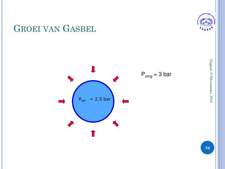 Groei van Gasbel