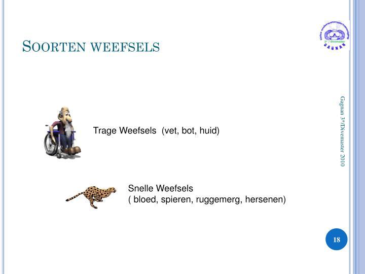 Soorten weefsels