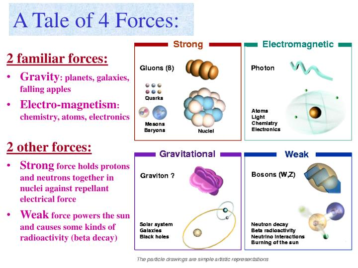 A Tale of 4 Forces: