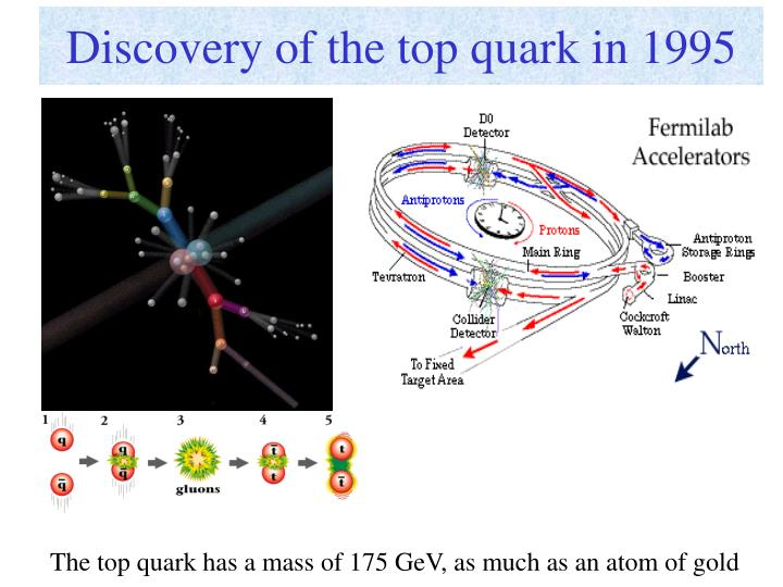 Discovery of the top quark in 1995