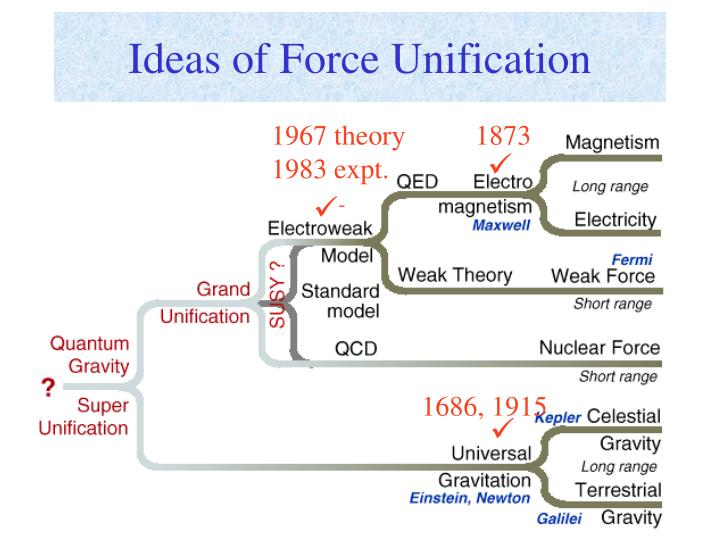Ideas of Force Unification