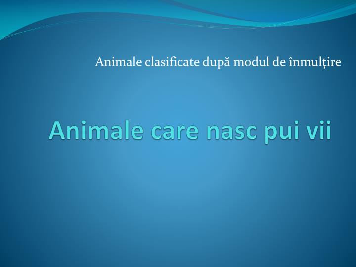 animale care nasc pui vii n.