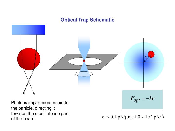 Optical Trap Schematic