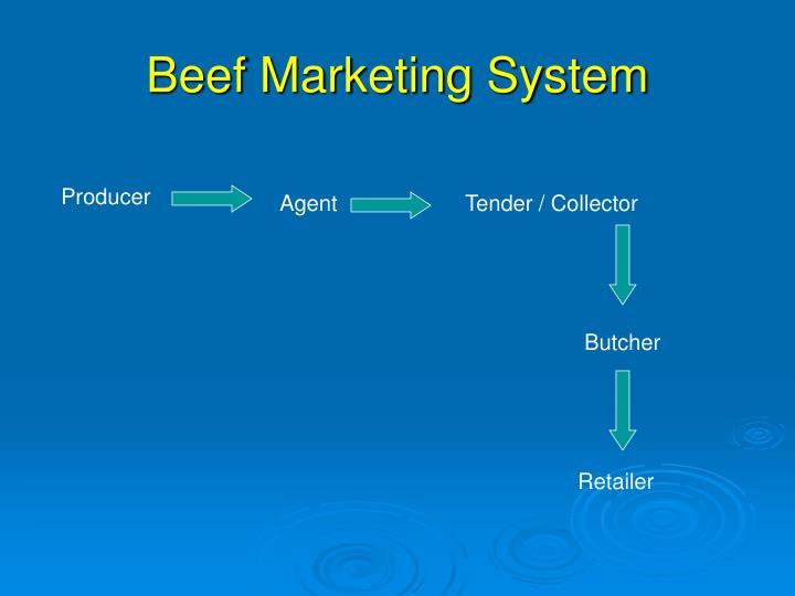 Beef Marketing System