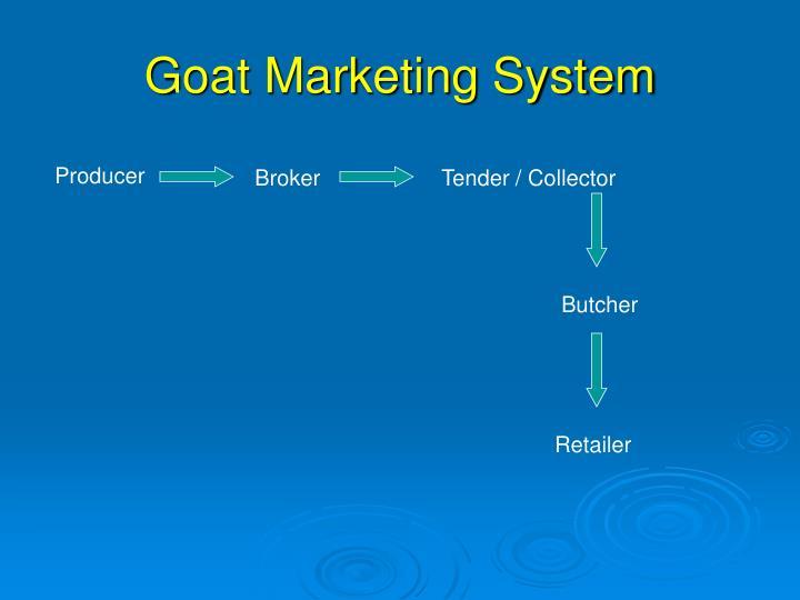 Goat Marketing System