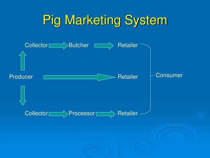 Pig Marketing System