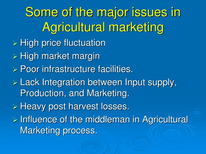 Some of the major issues in Agricultural marketing